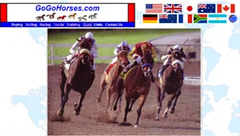 Race Horses and Resources Website